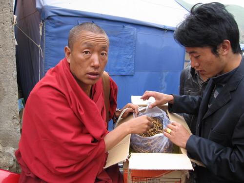 正在虫草交易的僧人